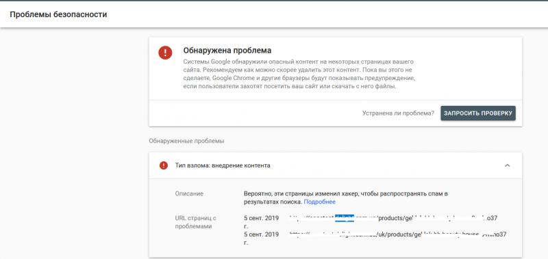 problemy_bezopasnosti.png